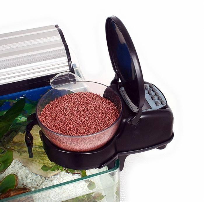 Кормушка для рыб автоматическая своими руками