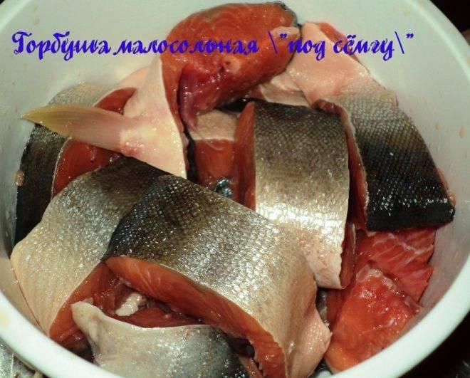 Засолка горбуши в домашних условиях - рецепты быстро и вкусно под семгу: фото, видео