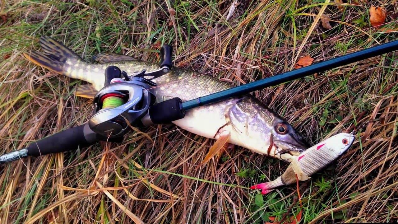 Рыбалка в марте на щуку, судака, карася и окуня (снасти, приманки, тактика) | lovitut.ru (рыбалка и бильярд) | яндекс дзен