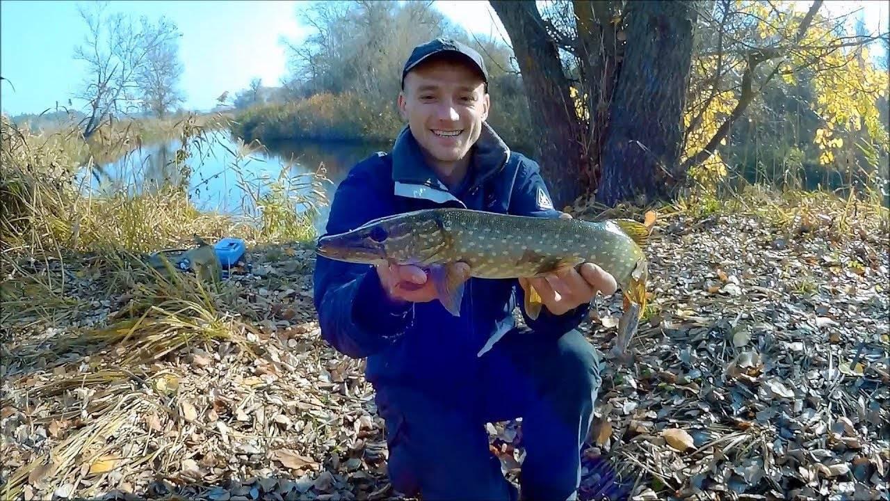 Kostantin topolov, осень на северском донце: в поисках активной рыбы