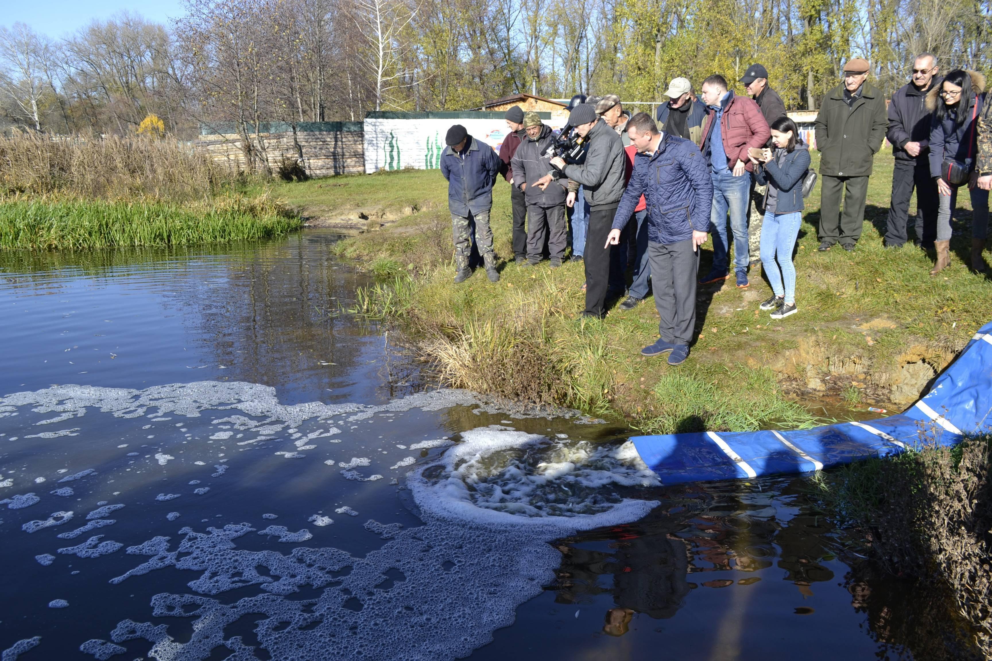 Почему белорусская рыба не уступает норвежской, и как зарыбляют водоёмы в стране?