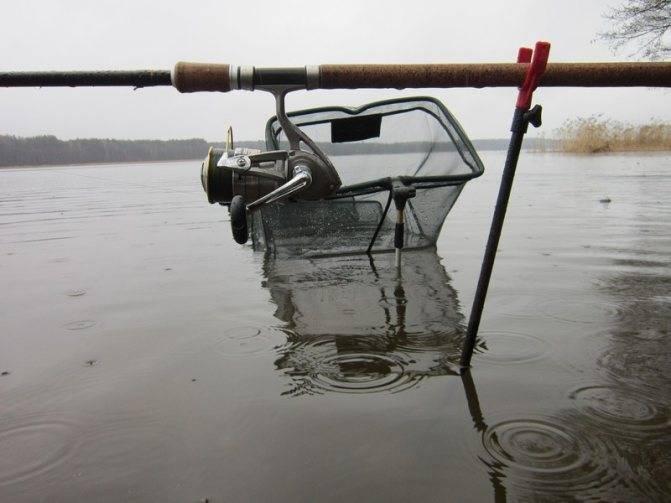В какую погоду лучше ловить щуку: в дождь, в ветер и давлении