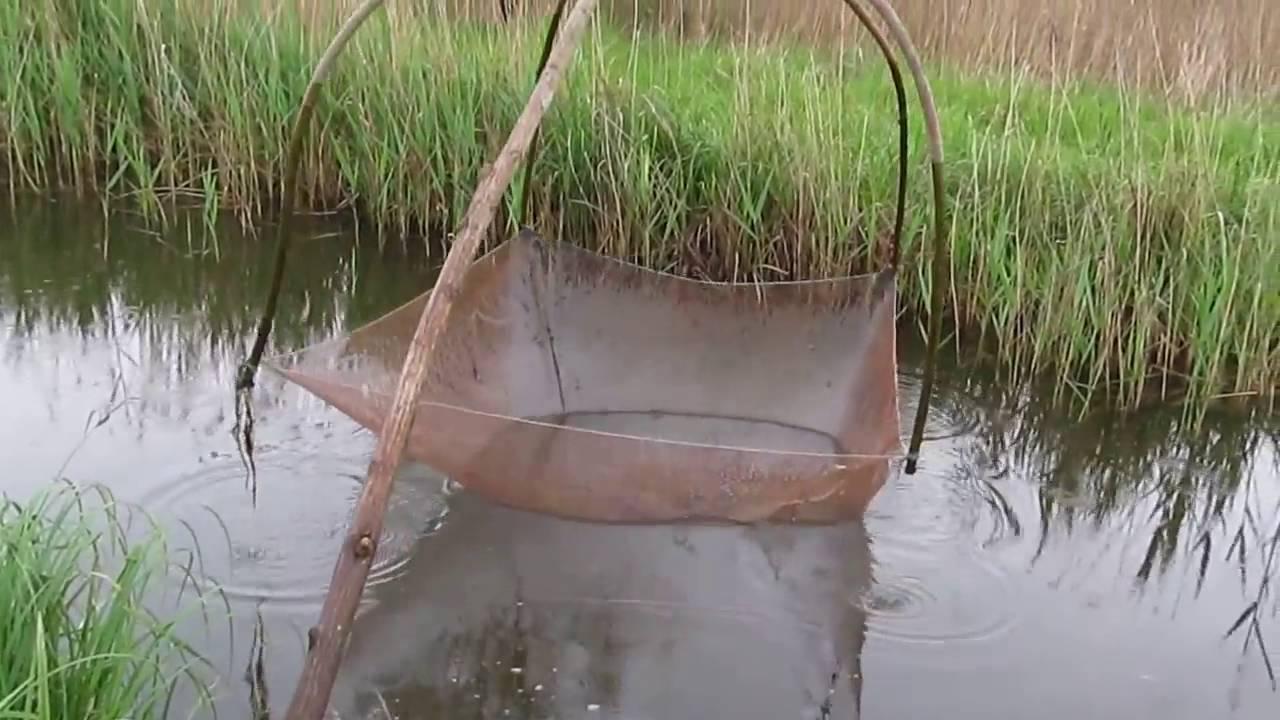 Верша-паук: как пользоваться рыболовной усовершенствованной ловушкой с 6, 9 и 12 входами? размеры снасти для рыбалки, отзывы