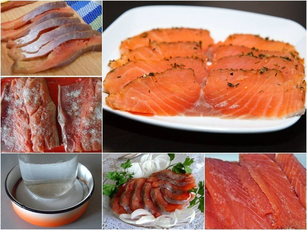 Кижуч соленый в домашних условиях быстро и вкусно, рецепты