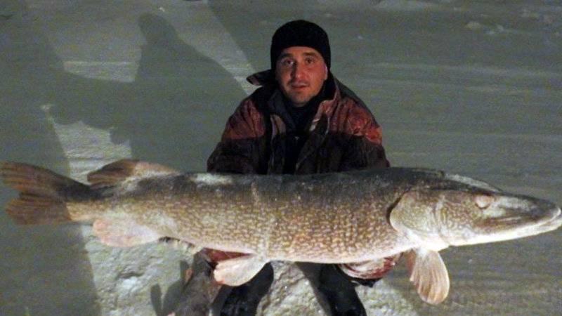 Рейтинг зимних палаток для рыбалки | рейтинги, списки - топ-10