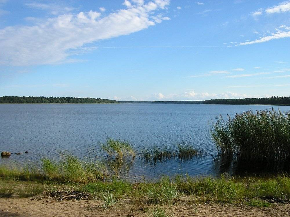 Кадыковский карьер — озеро в виде сердца в крыму