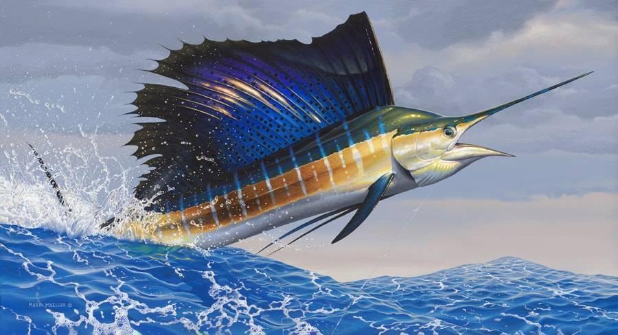 Какая рыба в океане плавает быстрее всех