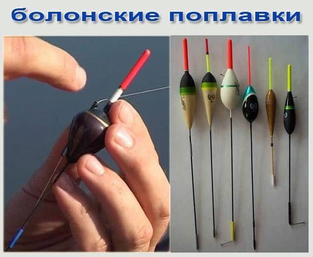 Зимняя рыбалка на поплавок. советы при ловле