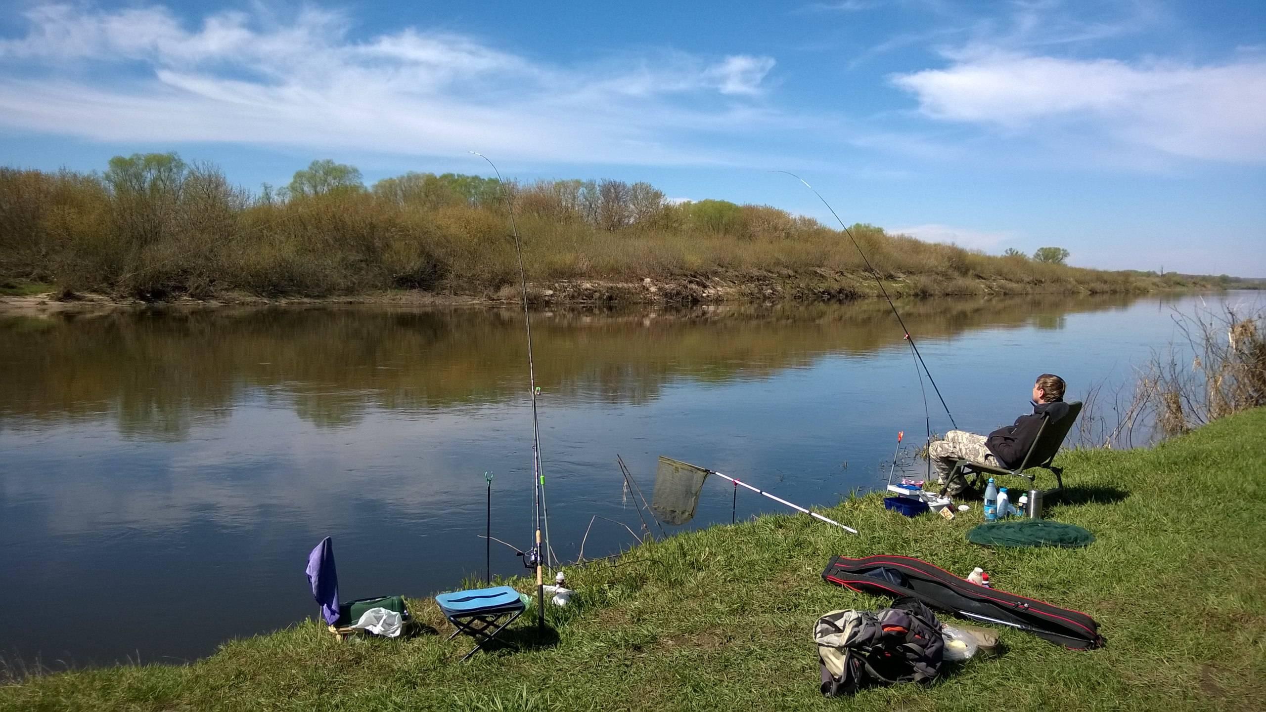 Рыбалка в ростове-на-дону и ростовской области: ловля раков и рыбы, рогожкино и другие места. куда поехать на рыбалку с проживанием?