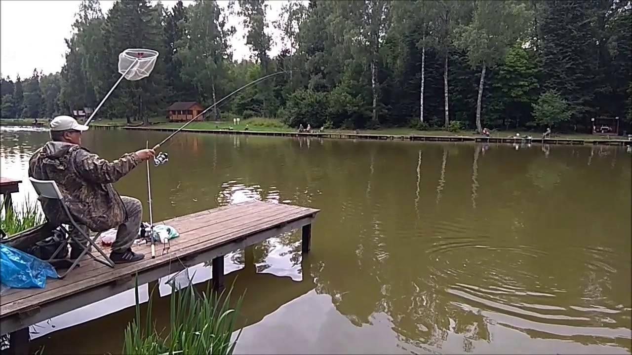 Клевое место - платная рыбалка, лосиный остров, база отдыха и цены