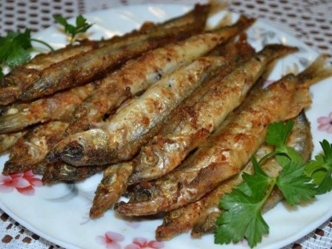 Польза и вред рыбы путассу для организма, вкусные способы приготовления